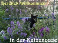 magdalena ggg escort baden württemberg